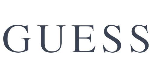 Geuss